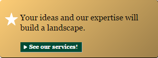 Your ideas and our expertise will build a landscape